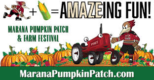 Tucson Pumpkin Patch by The Official Website Of The Tucson Roadrunners News