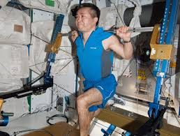 Astronaut Performs Kneeling Lift With ARED Device