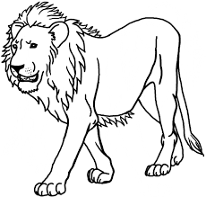 Drawing Coloring Page Of A Lion 98 In For Kids With