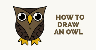 How To Draw A Cartoon Owl In Few Easy Steps