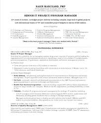 Example Management Resume Sample Project Manager