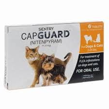 cats for the best flea treatment for cats for 2017 reviews
