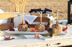 Rustic Party Themes
