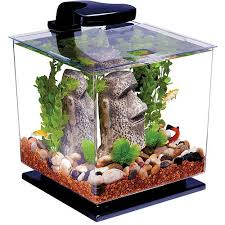 Lava Lamp Fish Tank Walmart by 103 Best Fish Tanks Images On Pinterest Gardens Amphibians And