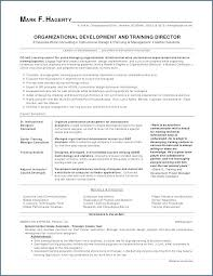 Work Experience Resume Example Gap Analysis Template Business Needs Learning Individual