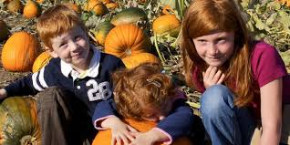 Pumpkin Farms In Bay County Michigan by 25 Pumpkin Patches In Alabama You Need To Visit This Fall