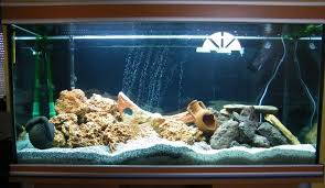 déco aquarium 300l