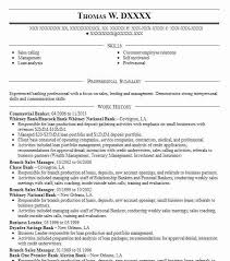Commercial Banker Resume Sample