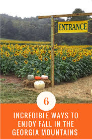 Best Pumpkin Patch In Fayetteville Nc by 6 Incredible Ways To Enjoy Fall In The Georgia Mountains