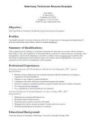 Ultrasound Resume Exles by Sonographer Resume Sle Fashionable Idea Sonographer Resume 1