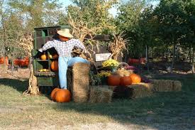 Pumpkin Patch North Bend Oregon by Don U0027t Miss These 15 Great Pumpkin Patches In Indiana