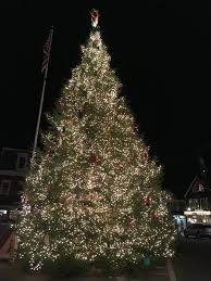 Shells Christmas Tree Farm by Visit Maine Blog Maine Vacation Inspiration U0026 Ideas