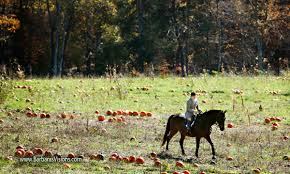 Motleys Pumpkin Patch by Sidelines Magazine U2013 Rita Mae Brown Books Breakfast And The
