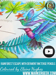 Rainforest Escape Colouring Book Review With Videos