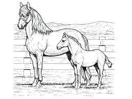 Color Page Horse Coloring Pictures Printable Pages Horseshoe And Rider Jumping Full Size