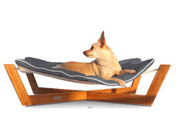 Llbean Dog Bed by Holiday Pet Gifts Cooking Light