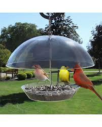 Heath Obervatory Dome Platform Bird Feeder Coastal
