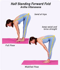 Begin In Standing Forward Fold Uttanasana With Your Hands Or Fingertips On The Floor At Side Of Each Foot You Can Also Rest Shins