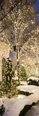 Spiral Lighted Christmas Tree Green Lights by Best 25 Outdoor Christmas Trees Ideas On Pinterest Outdoor
