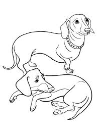 Printable Dachshund Coloring Page Free PDF Download At Coloringcafe