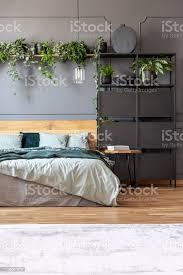 botanische schlafzimmer innenraum mit einem doppelbett schwarzen schrank und regal mit pflanzen stockfoto und mehr bilder behaglich
