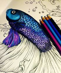 If Youre In The Market For Best Adult Coloring Books And Supplies Including Colored Pencils Drawing Markers Gel Pens Watercolors