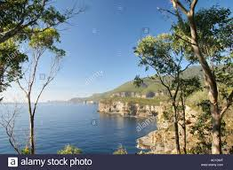 100 Waterfall Bay Near Eaglehawk Neck On The Tasman Peninsular In Stock