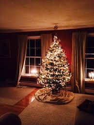 Christmas Tree Shop Syracuse Ny by Category Archive For