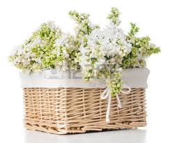 Fresh Spring Bouquet Of White Lilac Flowers In A Wicker Basket Home Decor