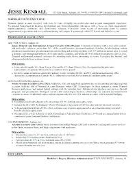 Account Executive Resume Examples Manager Objective Example
