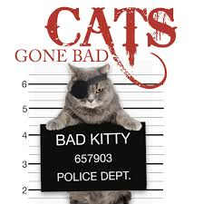 cats bad hardcover walmart