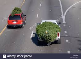 Christmas Trees On Top Of An SUV And A Truck On The Highway Being ... Man Cheats Death After Truck Lands On Top Of His Car Thika Town Arb Roof Top Tent Tips Tricks How To Put Up Your Tent Life As An Artists Wife Cowboy Bought A Truck Diy Bed Camper Build Album Imgur Gas Props And Shell Parts Cluding Boots 1 10th Scale 6x6 Rc Heck Of Say Hello To Black Peter Luxury Truck Cap Camping Youtube Top Tethering In A Four Things Consider When Choosing Lift Kit For Loading Logs Onto Selective Logging Grade Hard Now Hiring Pros Cons Starting Career Driver