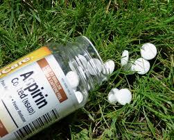 Aspirin Keep Christmas Trees Alive by Christmas Tree Watering Tips U2013 How To Get A Christmas Tree To Take