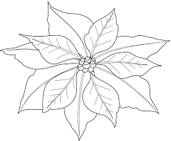 Poinsettia Coloring Page For Kids
