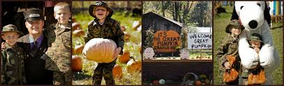 Pumpkin Patch Power Rd Mesa Az by Peanuts Pumpkin Patch Express Halloween Train Ride For Kids