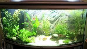 nouveau mon aquarium 250l eau douce questions