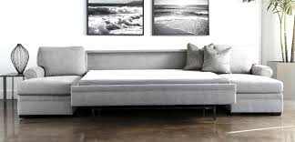 Wayfair Sleeper Sofa Sectional by Ac Pacific Tracy Sleeper Sectional Reviews Wayfair Striking Sofa