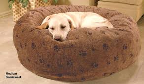 foster and smith dog bed restate co