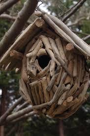 Driftwood Christmas Trees Devon by 55 Best Driftwood Birdhouses Images On Pinterest Driftwood
