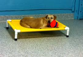 PVC Pipe Dog Bed Ideas DIY PVC Pipe Dog Bed Frame – Dog