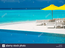 100 Maldives Infinity Pool Pool And Lounge Chairs Indian Ocean