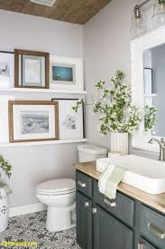 Bathroom: Cute Bathroom Ideas Luxury Small Bathroom Ideas On A Bud ... Best Coastal Bathroom Design And Decor Ideas Decor Its Small Decorating Hgtv New Guest Tour Tips To Get Your 23 Pictures Of Designs Bold For Bathrooms Farmhouse Stylish Inspire You Diy Bathroom Decorating Storage Ideas 100 Ipirations On A Budget Be My With Denise 25 2019 Colors For
