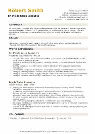 Sr Inside Sales Executive Resume Model Download PDF