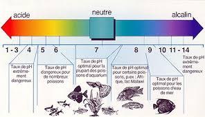 ph aquarium eau douce paramétre de l eau en aquariophilie