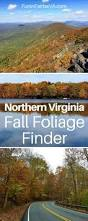 Best Pumpkin Patch Richmond Va by 189 Best Fun In Fairfax Va Images On Pinterest Northern Virginia