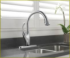 Delta Lahara Faucet Canada by Delta Single Handle Kitchen Faucet Home Design Ideas