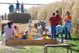 Pumpkin Farms In Wisconsin Dells by Govin U0027s Corn Maze And Pumpkin Patch Menomonie Govin U0027s Farm