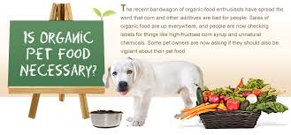 organic cat food is organic pet food necessary for your cat