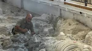 Ashfall Fossil Beds State Historical Park by Royal News Royal Nebraska Antelope County News