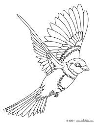 Bird Sitting On A Branch Flying Coloring Page